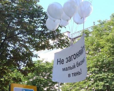 Как в Севастополе пикет крепких предпринимателей можно превратить в провокацию (фото)