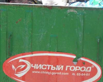 Просвета нет! В Севастополе можно зарыться в мусоре? (фото)