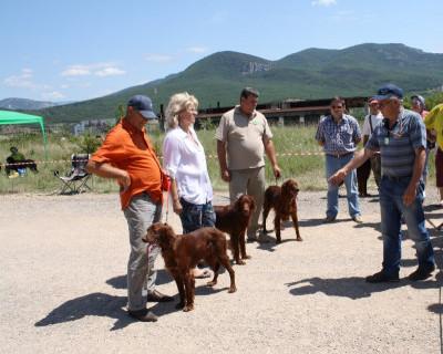 Первая выставка охотничьих собак возле горы Гасфорта (фото)