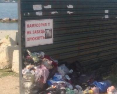 Севастополю дорог мусор на улицах города? Никак с ним не можем расстаться... (фото)