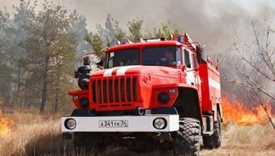 Севастопольские леса могут закрыть для посещения