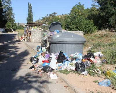 «Большое мусорное ведро» за наши деньги (фото, видео)