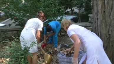 Медперсонал Первой городской больницы Севастополя заставляют выполнять работу дворников! (видео)