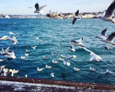 «Крым. Взгляд со стороны» – повестка дня Международной Медиаассамблеи, которая пройдет в Ялте и Севастополе