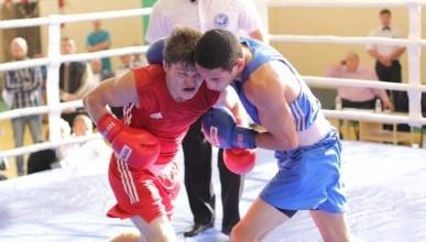 Севастопольцы стали победителями главного боксёрского турнира Крыма (фото)