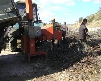 Уборка отходов без бюджетных денег (фото)