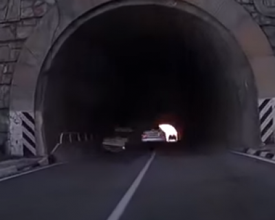 В сети появилось видео жуткого ДТП в тоннеле на трассе Ялта - Севастополь, в котором пострадали 6 человек (видеорегистратор)