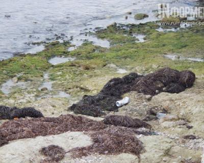 Севастопольские пляжи осенью - лучшее доказательство того, что Конец света уже наступил (214 фото)