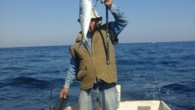 В Севастополе рыбаки ловят селедку и луфаря.