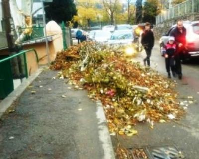 В Ялте студенты провели субботник и завалили мусором проезжую часть