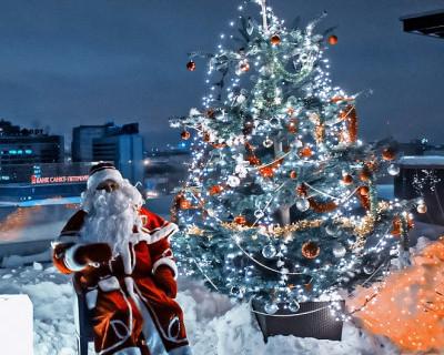Волшебная новогодняя сказка