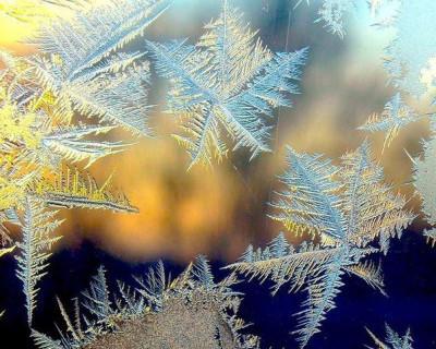 Новогодние узоры Севастополя (фото)
