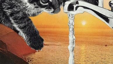 А вода на полуострове будет наша?!