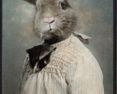 Театральный анекдот: Кто накормит зайцев в Севастополе?! (фото)