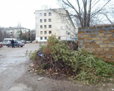 Севастополь завален новогодними «трупами»