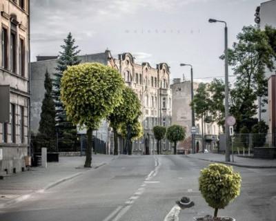 В Севастополе разыскивается водитель, сбивший девочку на пешеходном переходе