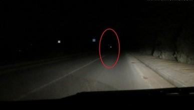 Ночной ИНФОРМЕР: Пешеход-невидимка — не вымысел, а страшная реальность (фото, видео)