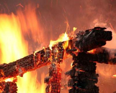 У самой культурной дамы Севастополя сгорела баня (фото дамы)