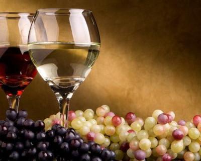 Севастопольская «Деловая Россия» поможет виноделам высказаться