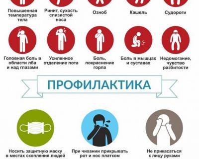 Симптомы гриппа и профилактика