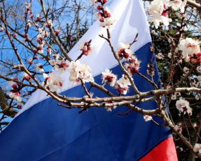 Видеомост «Москва-Симферополь»: «Два года «Русской весны»: политические итоги» (фото, видео)