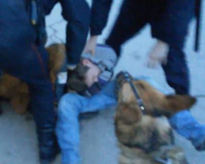 Как три севастопольских полицейских и собака тушили сигарету (реал видео)