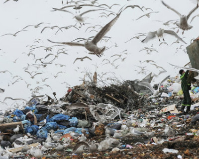 «Родной» мусор или кому в Севастополе не писаны законы РФ (скриншот)