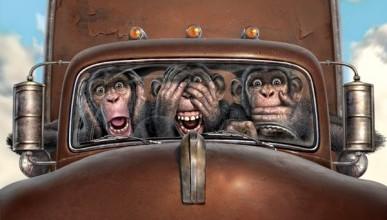 Ночной ИНФОРМЕР: На темной дороге встретились грузовой «Ford» и мопед. Есть пострадавшие (фото)