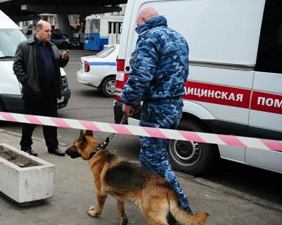 Ночной ИНФОРМЕР: Забытую в севастопольском троллейбусе сумку приняли за бомбу