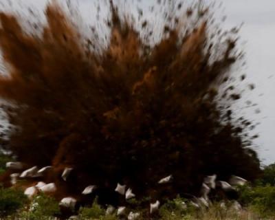 В Севастополе вблизи жилых домов разорвало на части немецкую авиабомбу (фото, видео)