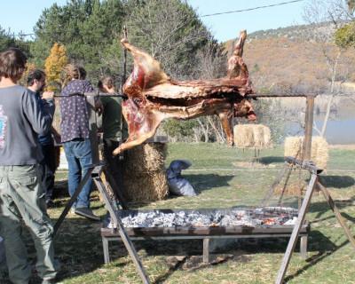 В Севастополе прошел первый фестиваль шашлыка, гриля и барбекю