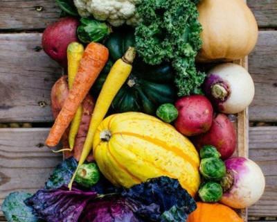 Можно ли в Севастополе купить овощи и фрукты и не отравиться? (фото)