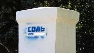 Крымчане и севастопольцы советуют полиции обратить внимание на «соль»