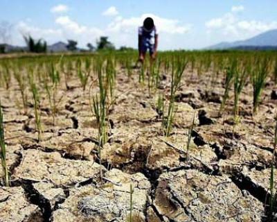 Чиновникам ЖКХ безразлично, что тысяча жителей Севастополя погибает без воды?