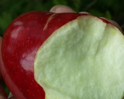 В России решили догрызть яблоко и возбудили дело