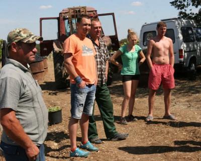 Севастопольские садоводы ищут поддержку у президента России и готовы выйти на пикет