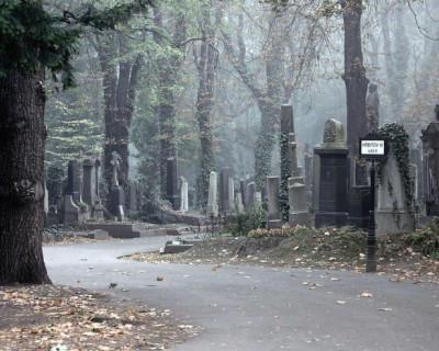 Государственный «переворот» в скорбных делах Севастополя