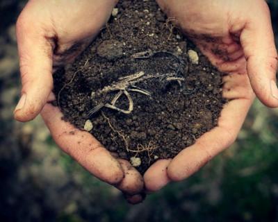 Правительство города-героя отбирает землю у севастопольцев? (часть 3)