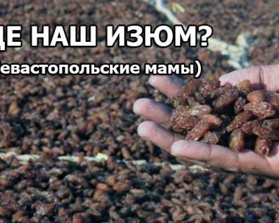По следам сухофруктов из севастопольских роддомов