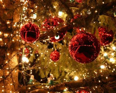 Чиновники Севастополя предлагают встретить Новый год с ворохом проблем и светящимися фигурами