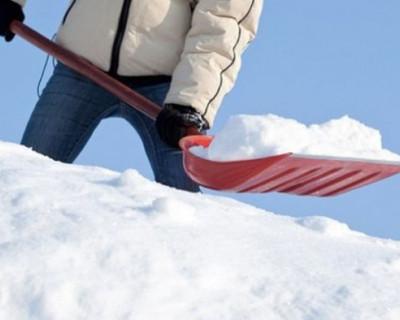 Севастопольцы хотят видеть на улицах города иногородних чиновников с лопатами!