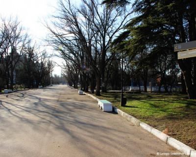 Кто стоит за мистическими метаморфозами в Севастополе?