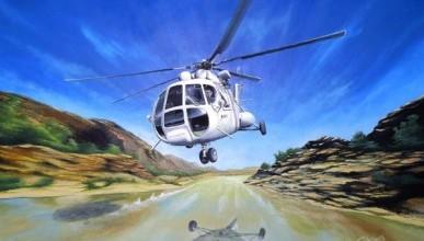 Севастопольская вертолетка в «штопоре» или крик её души напрасен?