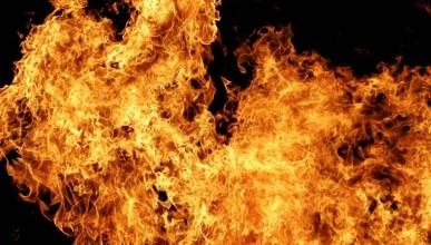 Новая мечта руководства ГУПСа «Пансионаты Севастополя»: «Чтоб вы поскорее сгорели»?