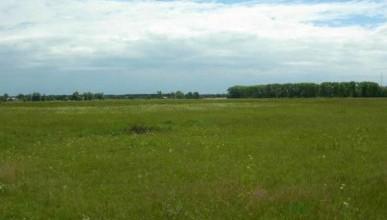 Кто в Крыму имеет право на бесплатное получение земельных участков