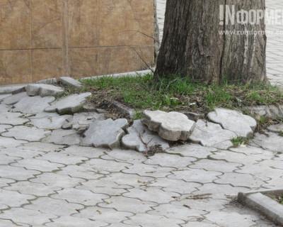 В Севастополе появились прогрессивные ландшафтные дизайнеры с неоднозначным вкусом?