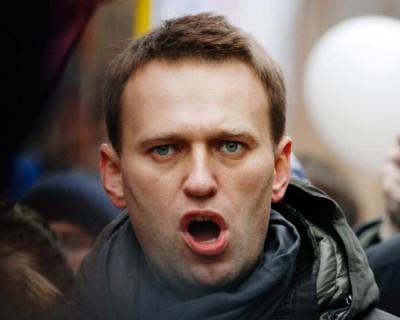 Как связаны оппозиционер Алексей Навальный и килограмм сушеных комаров?