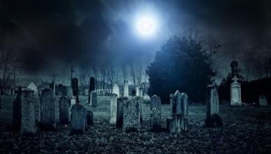 Мусорно-кладбищенская буффонада: почему в Севастополе страшно умереть?