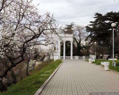 Благодаря проектам «Единой России» до конца года в Севастополе благоустроят восемь скверов