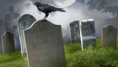 Департамент здравоохранения предлагает севастопольцам оригинальную надпись на надгробной плите?